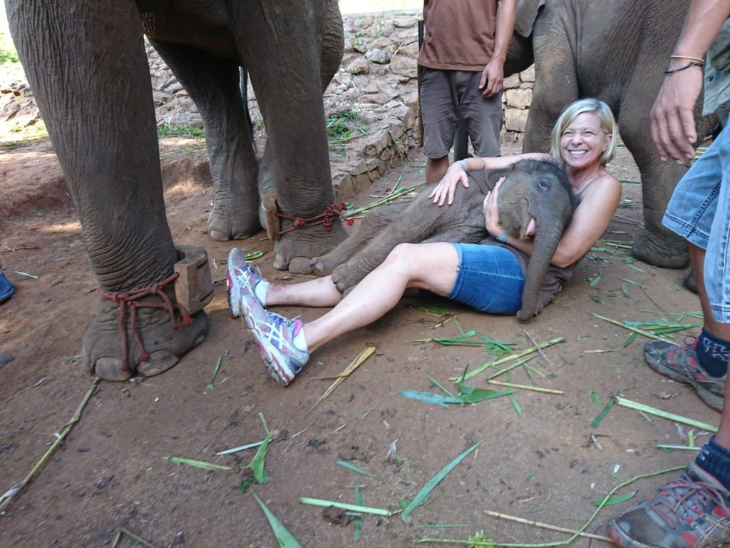 Hacker Paradise in Thailand with Elephants