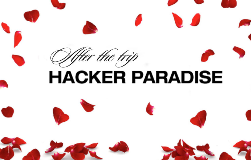 Hacker Paradise The Bachelor