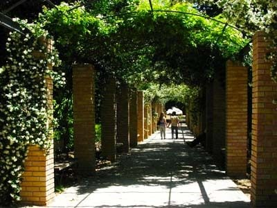national-garden-athens-housing-kitchen-example-digital-nomad-hacker-paradise